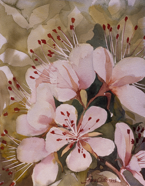 Painting Apple Blossom