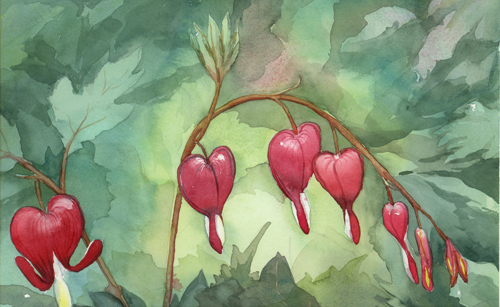 Painting Bleeding Hearts
